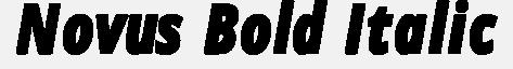 Novus-Bold-Italic